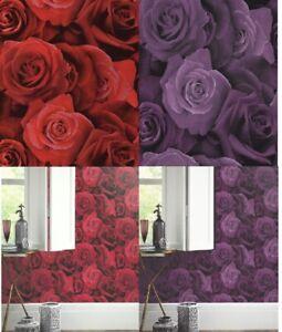 Arthouse Austin Rose Wallpaper in Red – 675600 & Purple 675601