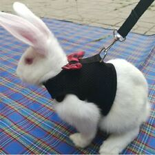 Large Black/Red Adjustable Soft Harness with Elastic Leash for Rabbit Bunny Cute