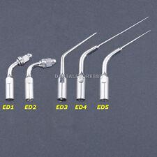 5 pcs Endodontic Dental Ultrasonic Endo Tips ED1 ED2 ED3 ED4 ED5 for Satelec DTE