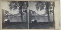 Lac Maggiore Lago Maggiore Italia Fotografia Stereo Amateur Vintage Albumina
