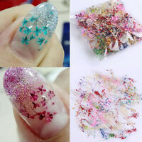 3D 10 Colors Real Dry Dried Flower for UV Gel Acrylic Nail Art Tips Decoration