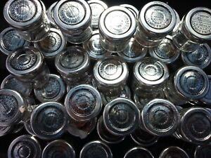 Wilkin & Sons 100 small empty Jam Jars 28g mini Tiptree