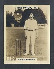 PINNACE CRICKET (KF198)-#085- DERBYSHIRE - BESTWICK