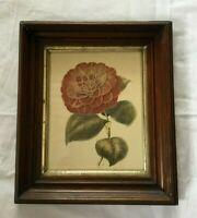 *Antique Victorian Walnut Wood Shadow Box Picture Frame w IBF Flower Print