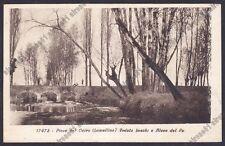 PAVIA PIEVE DEL CAIRO 07 Fiume PO Cartolina viaggiata 1929 Edizione DIENA