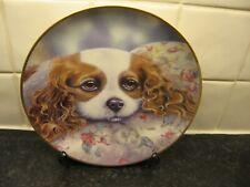 Cavalier King Charles Spaniel Dog Plate - Beautiful Dreamer - Danbury Mint