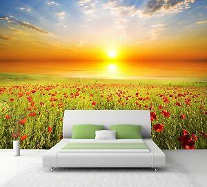 XXL Poster Fototapete Wandtapete Vlies Natur Mohnblumen Wiese im Sonnenaufgang