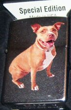 Zippo Pit Bull. Special Edition.Chrome Lighter Mint In Box