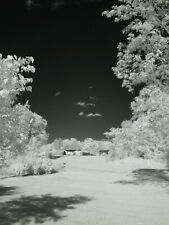 Fujifilm Fuji Fujinon XT1 Black and Whte BnW 830nm Infrared IR converted camera
