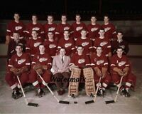 NHL 1955 Detroit Red Wings Color Team Picture 8 X 10 Photo Free Shipping