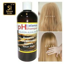 HAIR SHAMPOO ALKALINE MINERAL SILICON Repairs Nourishes Your Hair 16 oz ALKAVITA