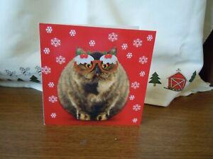 Christmas Card Puddy Cat Fat Tabby