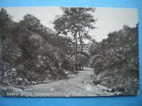POSTCARD LANCASHIRE OLDHAM - RUSTIC BRIDGE - ALEXANDRIA PARK