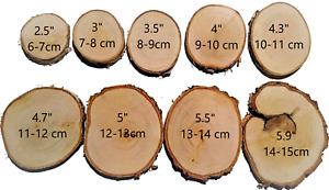 "6-16cm (2-6"") Natural Wooden Wood Log Slices Discs Wedding Decor DIY Crafts"