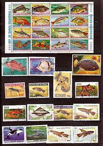 Guinea Manager / Republic: All Fish Of Sea And Aquarium Fish Tank 390T6