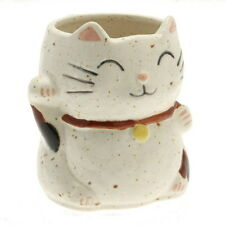 1x Japanese Lucky White Cat with Spots  Mug #113-100