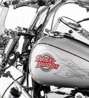 Genuine Harley Softail Fuel Gas Tank Set of 2 Decals Emblems Badges OEM