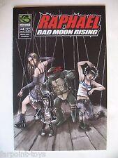 RARE Raphael Bad Moon Rising #4 Ninja Turtles TMNT Comic Book Mirage Marionette