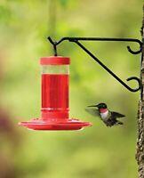 First Nature 3051 Hummingbird Feeder, 16-Ounce