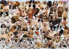 Dogs Galore! 1000 Piece Puzzle (Ravensburger)