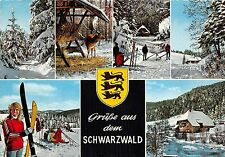 B56378 Schwarzwald deer ski sky multiviews   germany