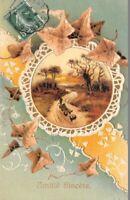 CPA Fantaisie - Amitié Sincère - Paysage dans un médaillon dentelle