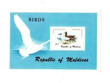 VINTAGE CLASSICS - MALDIVES SC# 867 - Birds - S/S - MNH