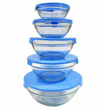 10 Pcs Glass Lunch Bowls Healthy Food Storage Containers Set With Blue Lids