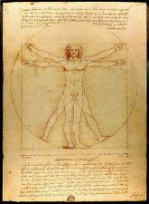 "Vitruvian Man Canon of Proportions by Leonardo da Vinci Print A3 16x11"" Poster"