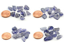 Lot Iolite Afrique du Sud - Pierres roulées - 10 pcs - 20 carats