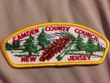 MINT CSP Camden County Council T-2a