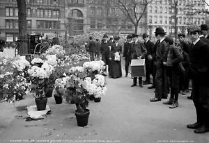 "1910 Flower Vendor's  Easter Display, New York City Old Photo 13"" x 19"" Reprint"