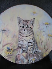 Hamilton 1985 Royal Worcester TIGER'S FANCY Cat Butterfly Daisies Ltd Ed Plate