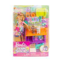 Barbie dolls Teacher school play set brand new Au Seller