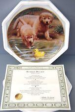 Rubber Duckie Golden Retriever Pups Collector Plate by Robert Christie Puppy Dog