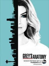 Grey's Anatomy Complete Season 13 Series Thirteen BRAND NEW SEALED DVD