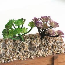 2x Plante Succulente En Miniature Pvc Artificielle Fleur Flocage Violet Vert