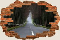 3D Hole in Wall Long Road Ahead View Wall Stickers Mural Film Art Wallpaper 305