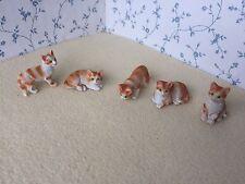 1:12 Scale GINGER & WHITE CAT/CATS/Kitten Dolls House Miniature Pet Animal