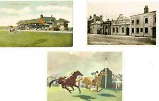 3 NEWMARKET HORSE RACING POSTCARDS