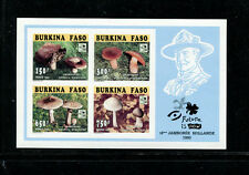 Burkina Faso 1996 Mushrooms Scouts Scott 1041a-42a var Set of Imperf Sheets Blue