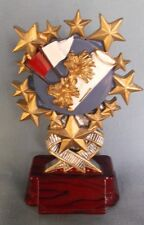 Cheerleader trophy multi star resin full color award