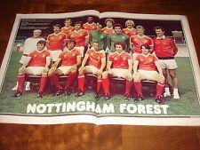 SHOOT MAGAZINE   FEBRUARY 1979  NOTTINGHAM FOREST TEAM GROUP (1978-79) IN COLOUR