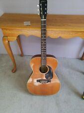 Vintage Ventura Bruno V10 Acoustic Guitar