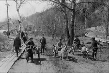 556055 Carros De Perro Montmorency cae 1915 foto John Boyd 61426 A4 Foto impresión