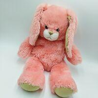 "Build A Bear Coral Beach Bunny Rabbit Plush 16"" Stuffed Animal Pink Brown Easter"