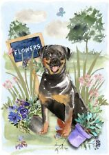 "Rottweiler Dog (4"" x 6"") Blank Card/ Notelet Design By Starprint"