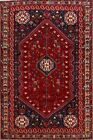 Tribal Hand-Knotted Abadeh Geometric Area Rug 6x10 Traditional Oriental Carpet