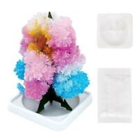 Kids Growing Crystal Tree Kit Christmas Paper Toy Z5A3 Decors Science C0H1