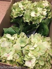 Set of 4 (Each Stem has 5 Bushes) Hydrangea Silk Artificial Flower in Green